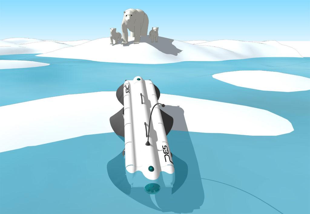 Der Velox ist am Nordpol und beobachtet eine Eisbärenfamilie in einiger Entfernung